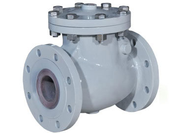 Ciy Section Swing Check Valves